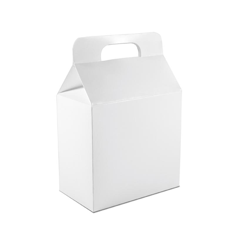 BoxTragetasche_geschlossen